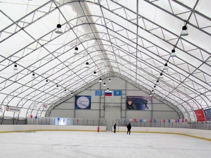ВБарнауле могут снести ледовую арену имени погибшего хоккеиста Черепанова