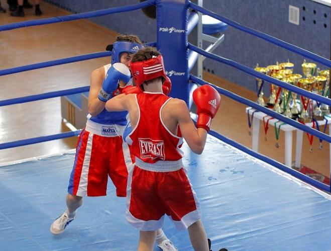 Молодые боксеры сразятся заКубок губернатора