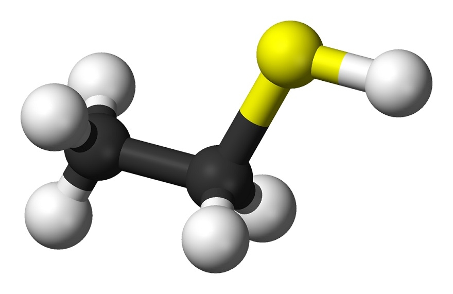 Росприроднадзор ищет источник омской вони вНефтезаводе иназаводе пластмасс